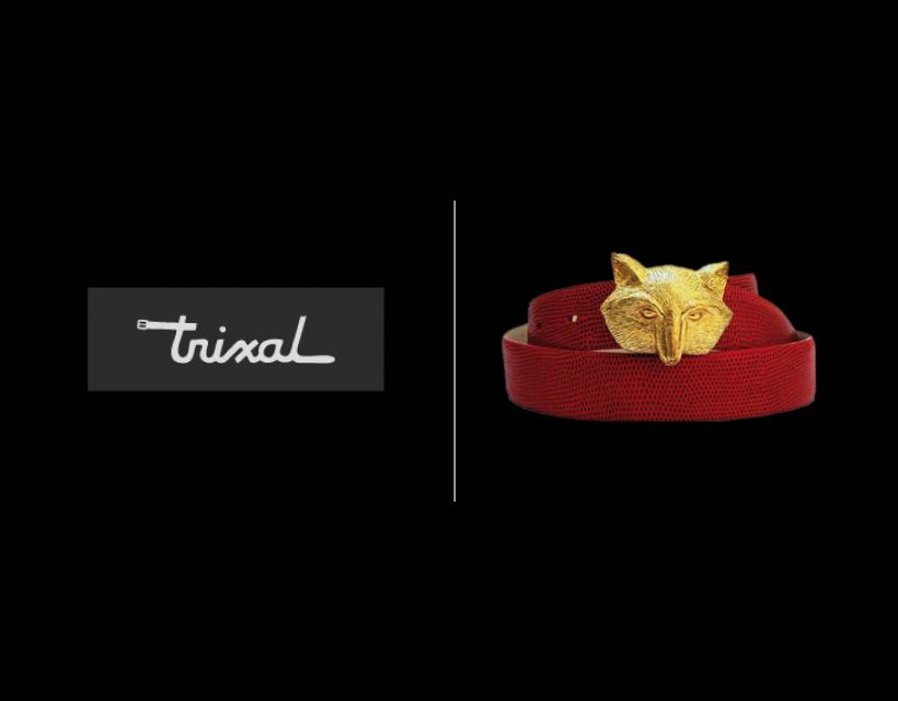 Trixal